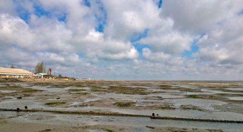Азовское море отступило от побережья Украины
