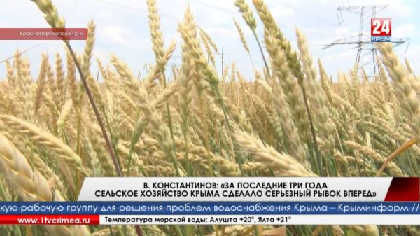 За последние три года сельское хозяйство Крыма сделало серьёзный рывок вперед