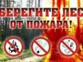 ГАУ РК «Белогорское лесное хозяйство» информирует о правилах пожарной безопасности в лесу