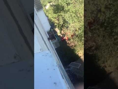 «Человек-паук» из Евпатории проникал в открытые окна квартир и набрасывался на людей