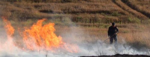 Под Симферополем сгорело 5 га сухой травы, огонь подбирался к селу