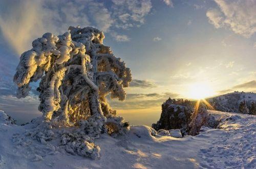 Государство Украину ждет самая свирепая зима за100 лет
