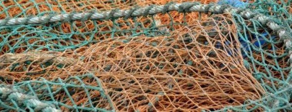 В Крыму выловили в море украинские сеты