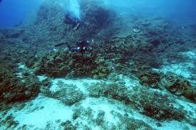 Захоронения химикатов на дне Черного моря безопасны