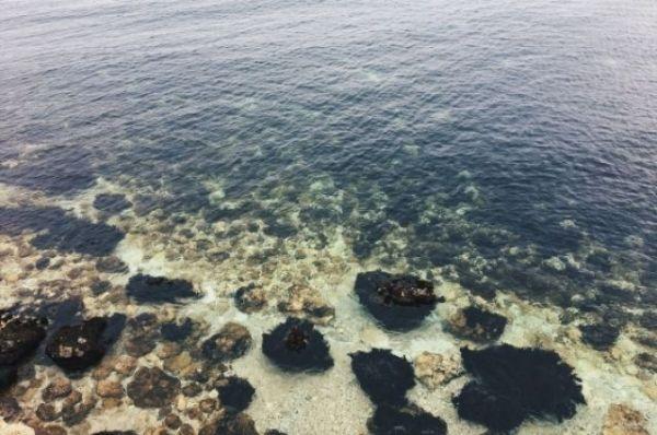 На дне Черного моря захоронены химические отходы, не представляющие угрозы
