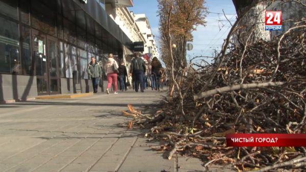 Санитарное состояние столицы Крыма: почему в Симферополе появляются стихийные свалки?