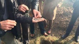 Ученые хотят сберечь закопанный в Симферополе дворец