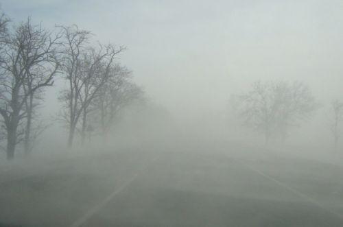 ВМосковском регионе ожидаются метель, гололед идо3 градусов тепла