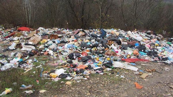 Свалку мусора влизи Баклашей ликвидируют поинициативе активистов ОНФ