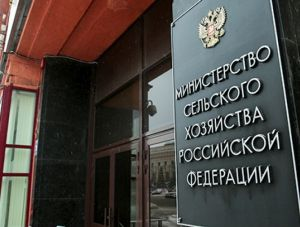 Минсельхоз: Через пять лет РФ полностью себя обеспечит едой