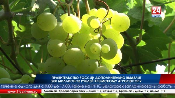 200 миллионов рублей Правительство России выделит крымскому агросектору