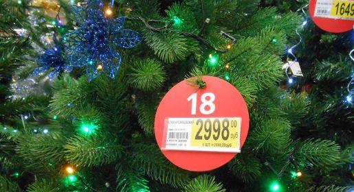 Материковая сосна или искусственная замена: крымчане выбирают новогоднюю ёлку