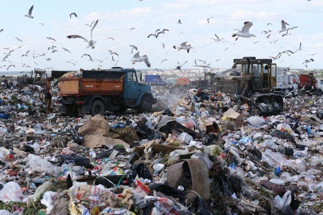 Более 500 млн рублей потратят на восстановление полигона ТБО в Гаспре
