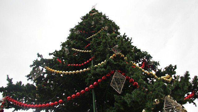 Главную елку крымской столицы откроют 22 декабря