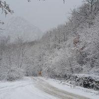 Сергей Шахов: при ухудшении погодных условий строго соблюдайте правила безопасности!