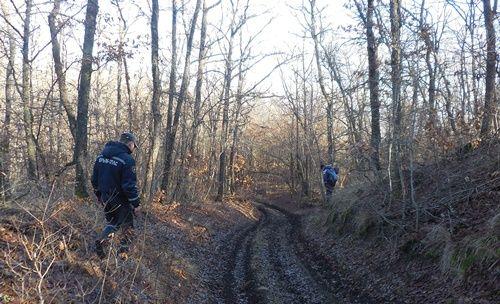 Спасатели «КРЫМ-СПАС» осуществляют патрулирование горно-лесной зоны Республики