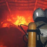 В Крыму за сутки ликвидировано 5 пожаров