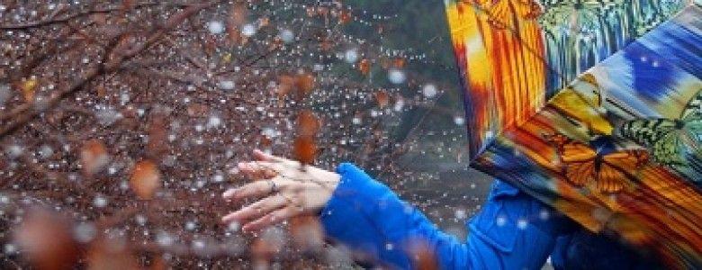 Выходные в Крыму будут теплыми и дождливыми
