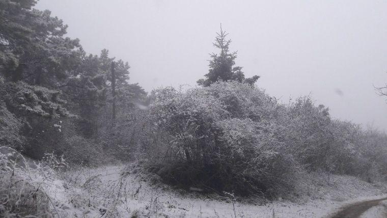 На выходных в Крыму прошли сильные снегопады
