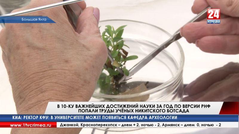 Российский научный фонд включил труды учёных Никитского ботсада в ТОП-10 достижений отечественной науки за год