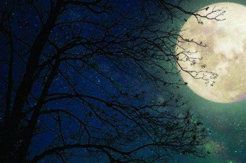Астроном: при хорошей погоде томичи смогут увидеть лунное затмение