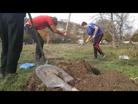Что нашли во время археологических раскопок в Симферополе
