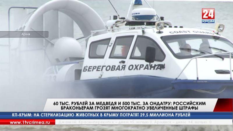 60 тыс. рублей за медведя и 500 тыс. за ондатру: российским браконьерам грозят многократно увеличенные штрафы
