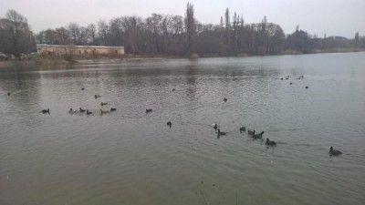 Воды вКрыму нехватает, нужно найти новые источники,— президент РАН