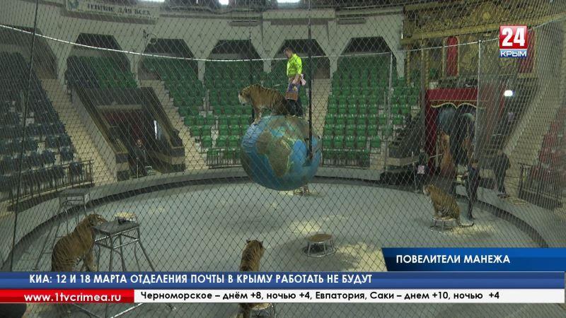 Центнер мяса для тигров и 4 килограмма овощей для медведя: артисты цирка Мстислава Запашного показали журналистам, как готовятся к представлению их хвостатые «коллеги»