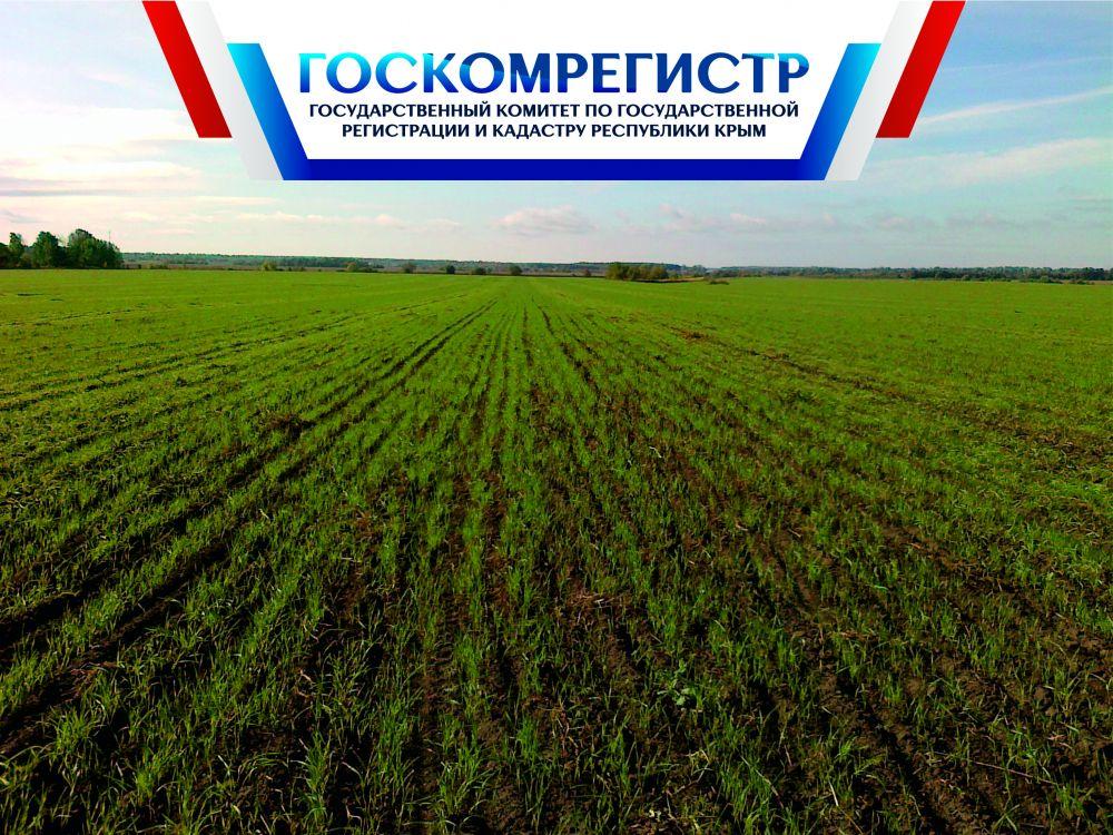 В Крыму местными администрациями решается вопрос возврата невостребованных земельных долей в муниципальную собственность — Александр Спиридонов