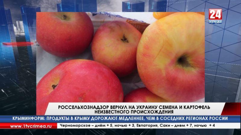 Контрабанда не пройдёт! Россельхознадзор пресёк за неделю 66 попыток ввоза растительной продукции с Украины