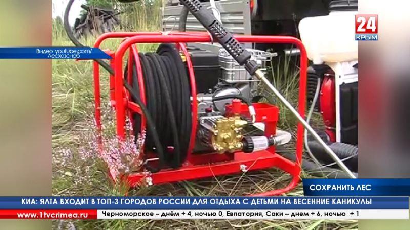 Дуб чешуйчатый, ясень и клён. В этом году в Крыму высадят 15 миллионов саженцев деревьев