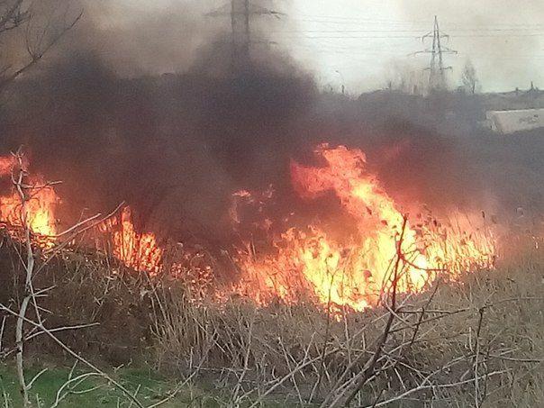 На окраине Симферополя вспыхнул крупный пожар: горели камыши
