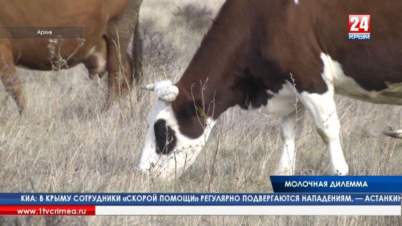 «Молочная дилемма»: в Симферополе обсудили проблемы крымских молочников