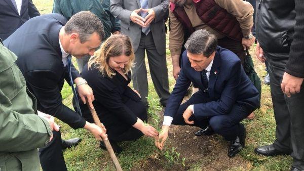 В провинции Латакия появилась Аллея российско-сирийской дружбы