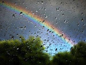 Сегодня в Крыму ожидается дождь