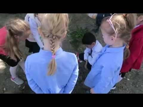 Феодосийские школьники отметили всемирный День Земли