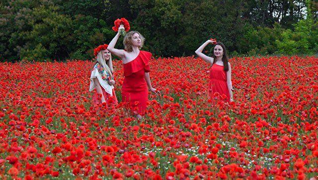 Буйство красок: крымские места для фотосессий в цветущих полях