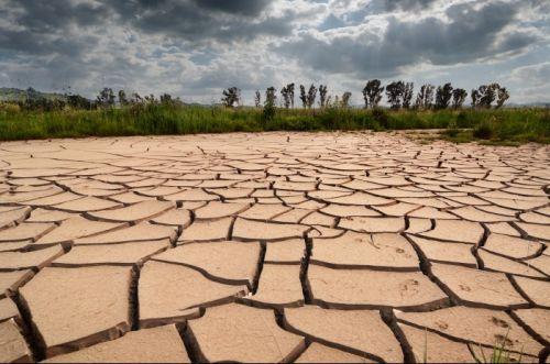 В Крыму существует угроза засухи