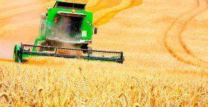 Глава минсельхоза Крыма назвал «невосполнимым ударом» по отрасли засуху и рост цен на ГСМ