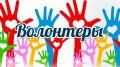 Минприроды Крыма приглашает принять участие во Всероссийской экологической акции «Волонтеры могут все»