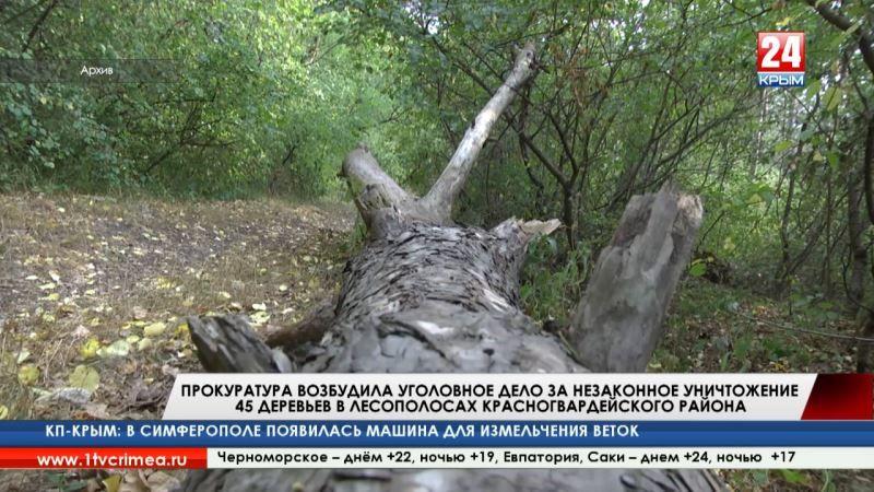 Прокуратура возбудила уголовное дело за незаконное уничтожение 45 деревьев в лесополосах Красногвардейского района