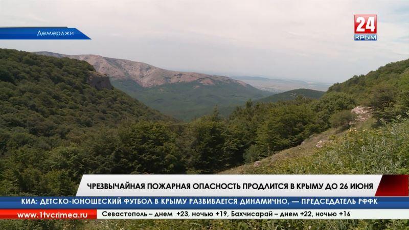 Огонь под запретом. Чрезвычайная пожарная опасность продлится в Крыму до 26 июня