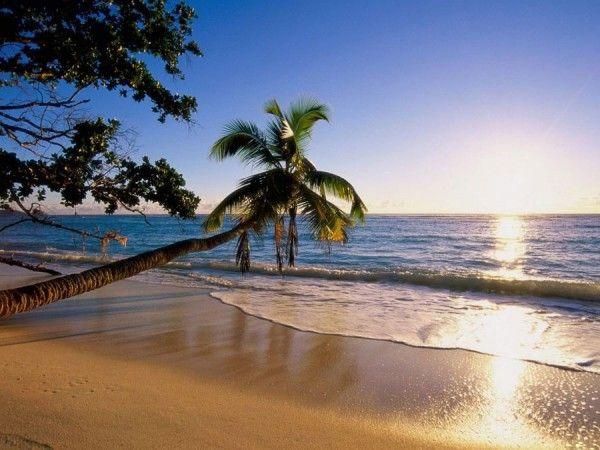 Цена вопроса: сколько стоит отдохнуть на море в июле
