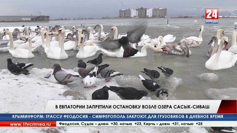 В Евпатории запретили остановку возле озера Сасык-Сиваш