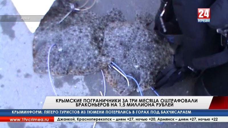 Крымские пограничники за три месяца оштрафовали браконьеров на 1,5 миллиона рублей