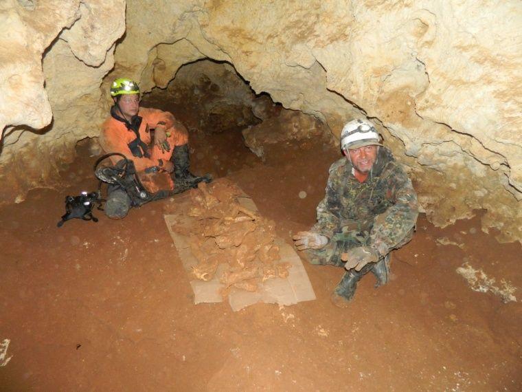 В пещере «Таврида» не нашли следов человека
