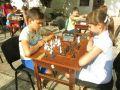 В Феодосии сегодня открылся шахматный турнир