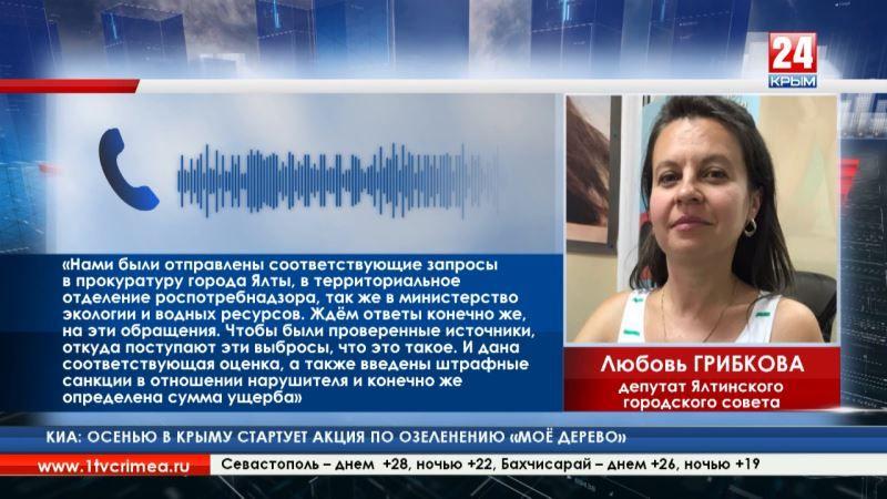 Депутаты Ялты выясняют откуда течёт неизвестная жидкость в районе Приморского пляжа