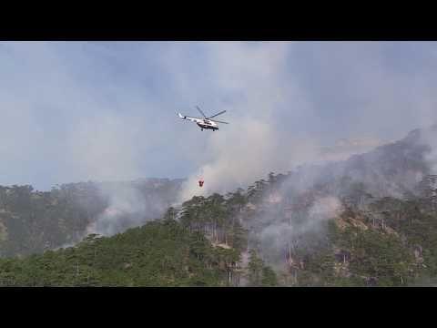 В ближайшее время пожар в ущелье Уч-Кош возле Ялты ликвидируют - МЧС